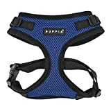 Puppia Authentic RiteFit Harness with Adjustable Neck, Small, Royal Blue